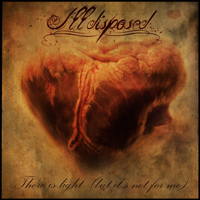 Illdisposed, There is Light but it's not for me, Massacre Records, Lady_Metal